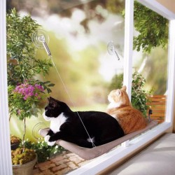 Cats Window Hammock
