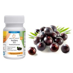 High Quality Acai Berry 10:1 Extract Capsules