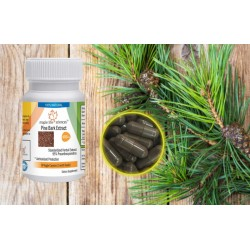Pine Bark Extract Capsules 95% OPC Pure & High Quality