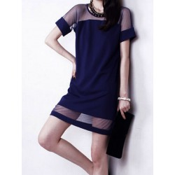 Navy Sheer Panel Shift Dress