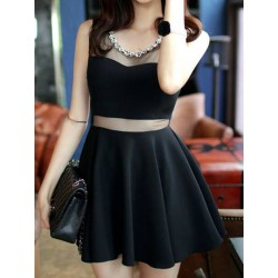 Black Sheer Panel Skater Dress