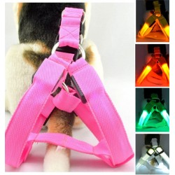 LED Hundegeschirr
