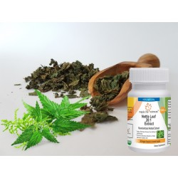 Nettle Leaf Extract Capsules 20:1 Urtica dioica Extract For Prostate Health